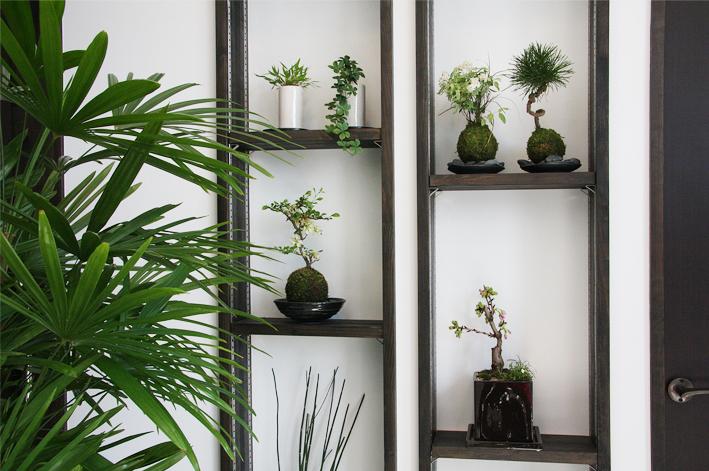 待合室の盆栽